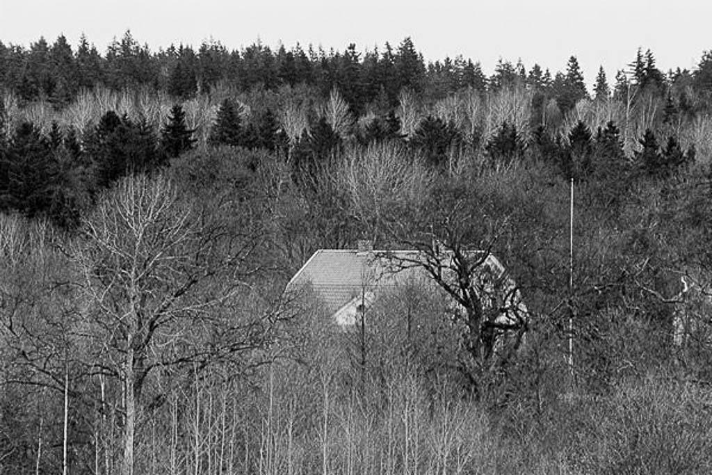 akerslund03-600.jpg