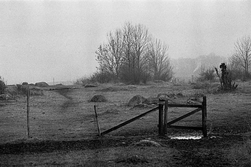 grinden03-600.jpg