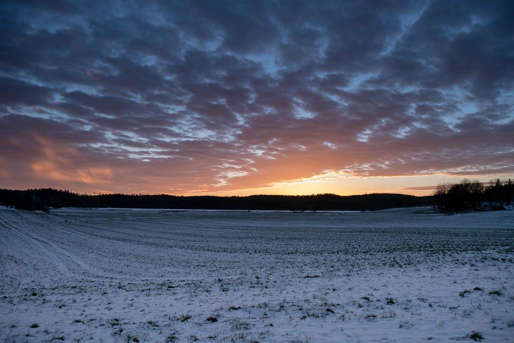 Vi på Karlshäll önskar er alla ett gott nytt år!