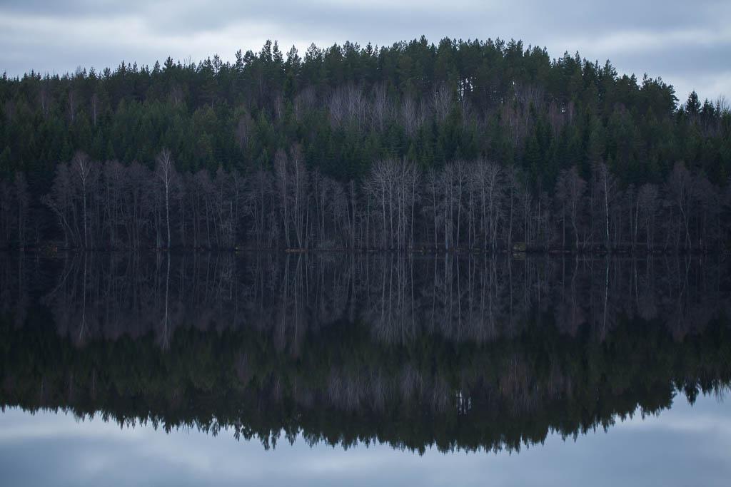 Speglingar i Harssjön
