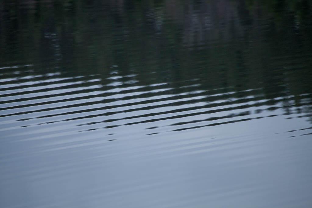 Krusningar på Harssjön